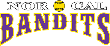 NorCal Bandits Fastpitch Custom Shirts & Apparel